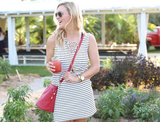 flora farms striped dress5