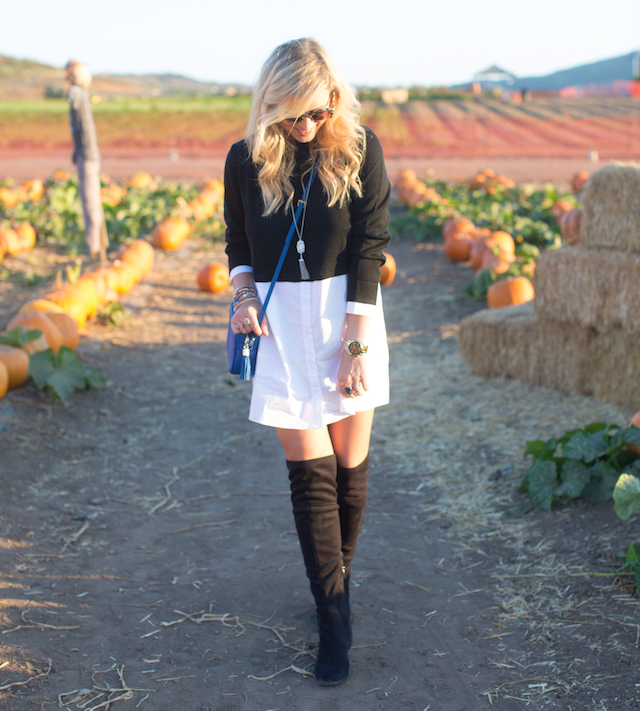 shirtdress with sweater