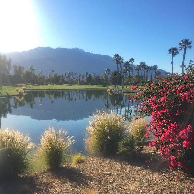 doubletree palm springs view
