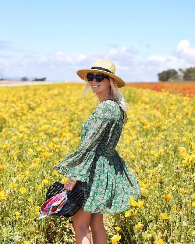 The Flower Fields at Carlsbad | My Style Diaries