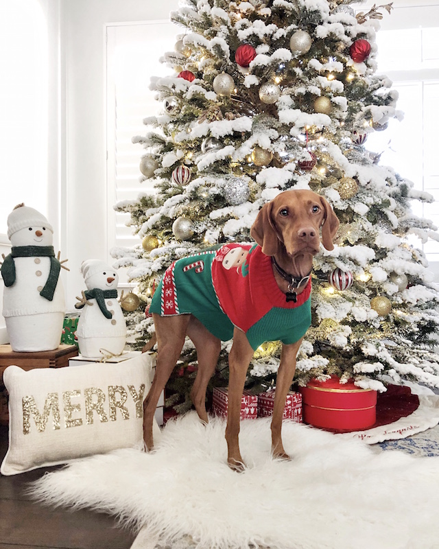 Holiday home decor and Louise the Vizsla | My Style Diaries blogger Nikki Prendergast